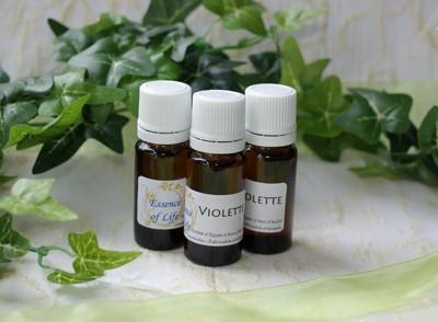 Huile de Parfum Essence of Life - Violette