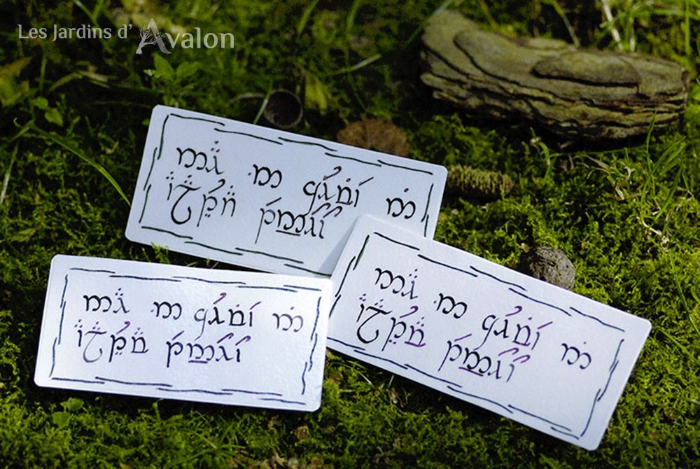 """Prière de protection elfique """"Puisse la vie me protéger à jamais"""""""